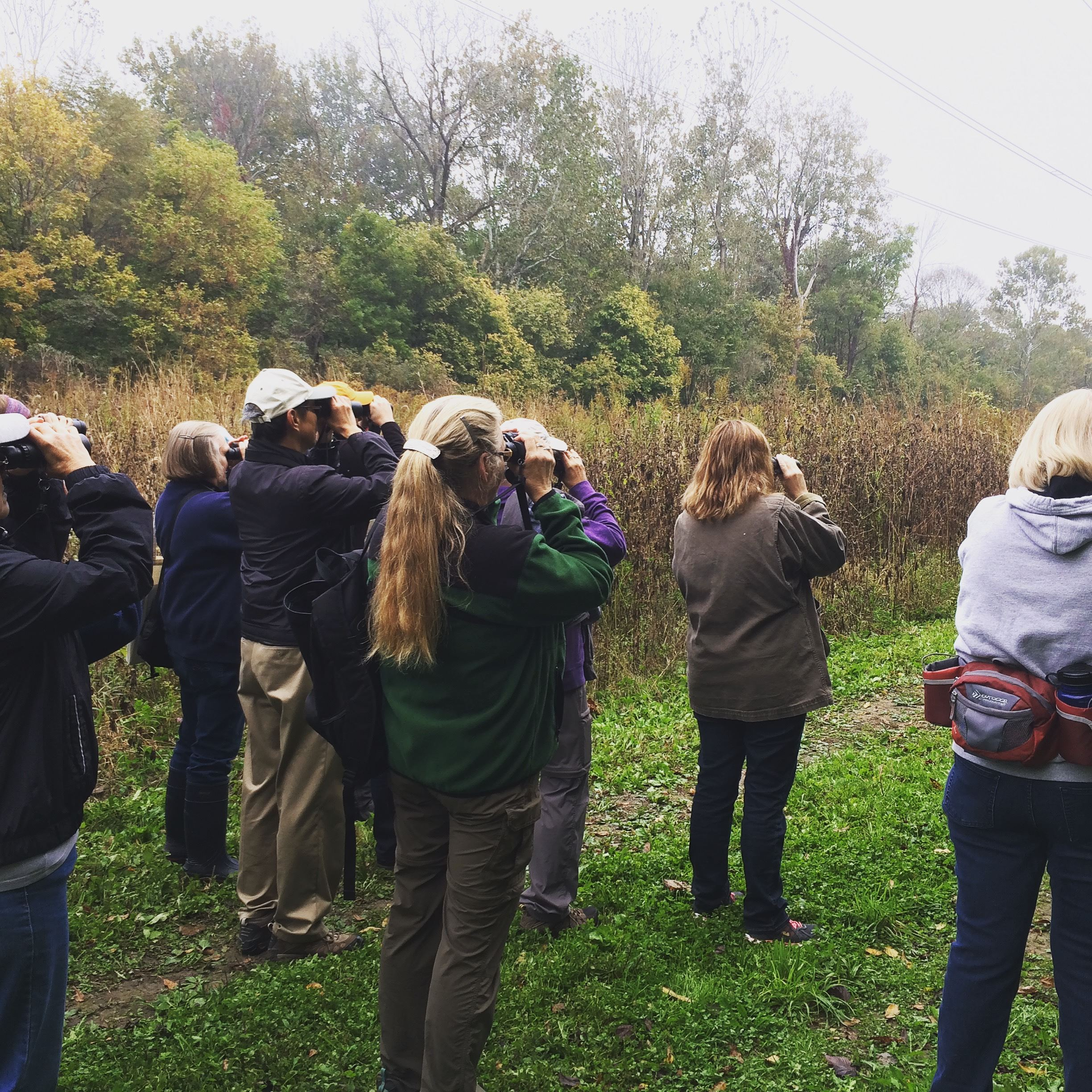 Fall Bird Walk